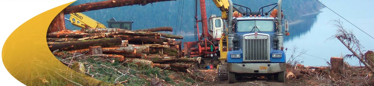 What it does, Forestry Management Software